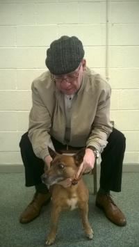 Owner with his dog at Dogs Trust Roadshow